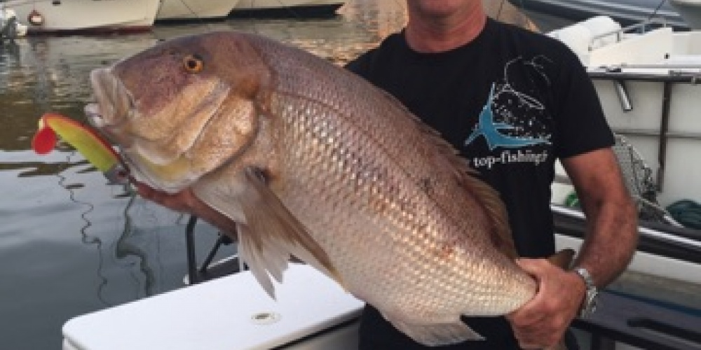 Denti Pris par un client Top Fishing
