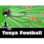 Tenya Football